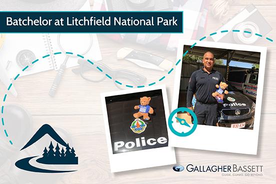 Bachelor at lichfield national park