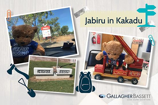 Jabiru in Kakadu